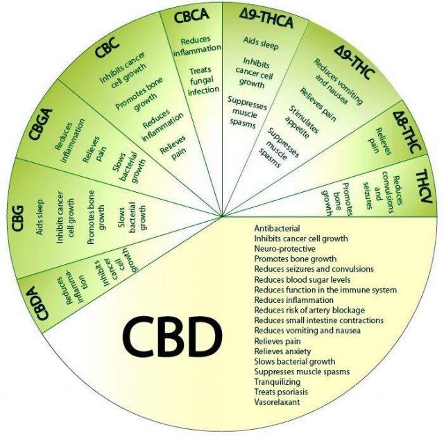 CBD,Full Spectrum,Topical